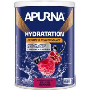 Energy drink Apurna Fruits rouges - 500g